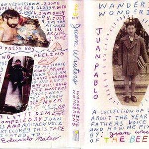 Image for 'Wandering Wondering'