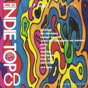 Image for 'Indie Top 20, Volume 11'
