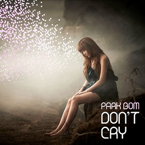 Bild für 'Don't Cry - Single'