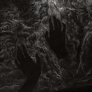 Image for 'Myrmecia'