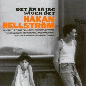 Image for 'Det Är Så Jag Säger Det'