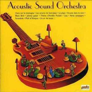 Image for 'Acoustic Sound Orchestra'