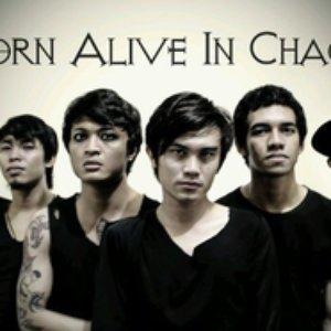 Bild för 'Born Alive In Chaos'