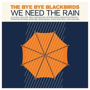 Bild für 'We Need The Rain'
