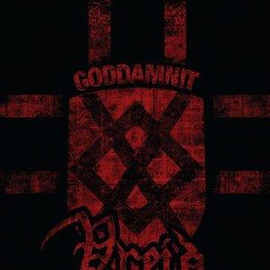 Image for 'Vreid Goddamnit'