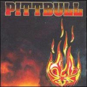 Image for 'Pittbull'