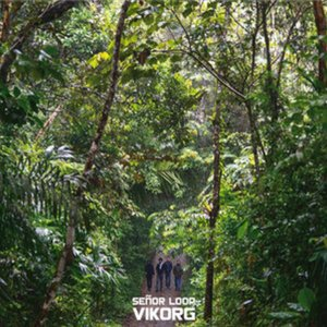 Image for 'Vikorg'