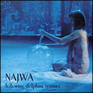 Image for 'Following Dolphins Remixes'