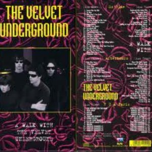 Image for 'A Walk With the Velvet Underground'