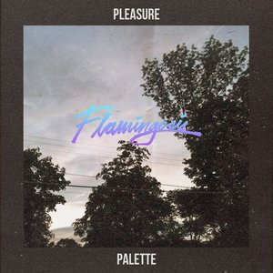 Image for 'Pleasure Palette'