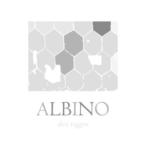 Image for 'Albino'