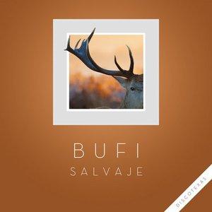 Image for 'Salvaje'
