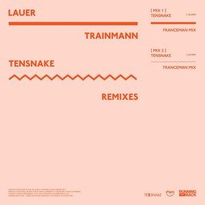 Image for 'Trainmann (Tensnake Remixes)'