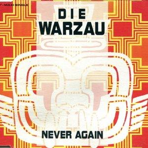 Immagine per 'Never Again'