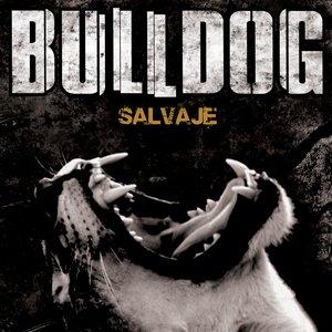 Image pour 'Salvaje'
