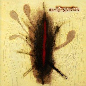 Imagen de 'I Surrender'