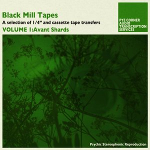 Image for 'Black Mill Tapes, Volume 1: Avant Shards'