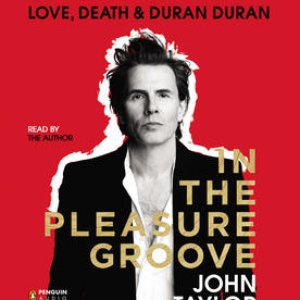 Bild för 'In The Pleasure Groove: Love, Death & Duran Duran'