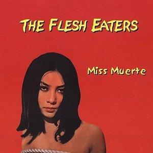 Image for 'Miss Muerte'