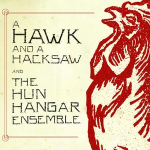 Image for 'A Hawk And A Hacksaw And The Hun Hangár Ensemble'