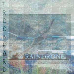 Image for 'RAINDRONE'