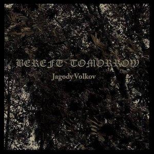 Image for 'Jagody Volkov'