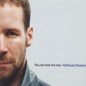 Bild für 'You Can Love Me Now'