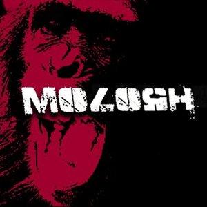 Image for 'Molosh'