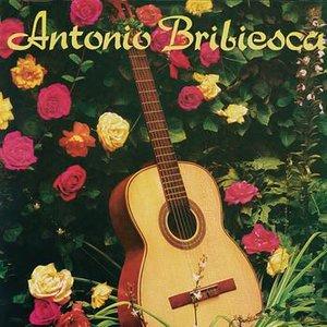 Image for 'Antonio Bribiesca'