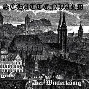 Image for 'Der Winterkönig'