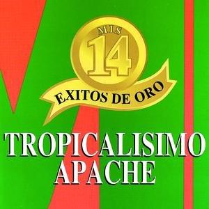 Image for 'Mis 14 Exitos De Oro'