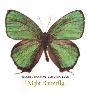 Bild für 'night butter fly'