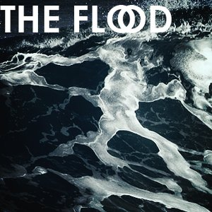 Image for 'The Flood'