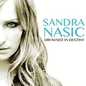 Bild für 'Drowned In Destiny'