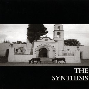 Image for 'The Synthesis'