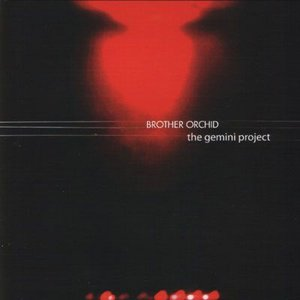 Image for 'The Gemini Project'