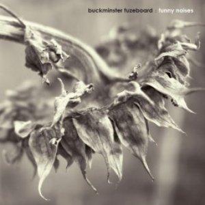 Image for 'Buckminster Fuzeboard'