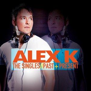 Bild für 'The Singles - Past & Present'
