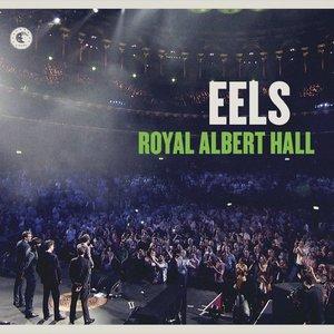 Bild für 'Royal Albert Hall'