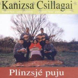 Image for 'Plînzsjé puju'