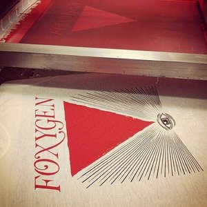 Image for 'Introducing Foxygen'