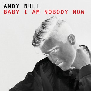 Image for 'Baby I Am Nobody Now'