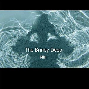 Image for 'The Briney Deep (Bonus Track Version)'