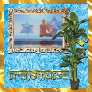 Image for 'Transmuteo'