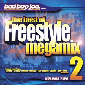 Image for 'the best of Freestyle Megamix 2'