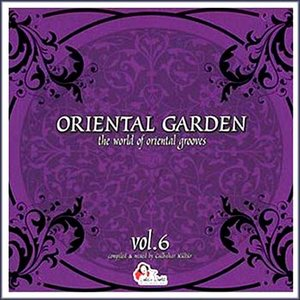 Image for 'Oriental Garden Vol.6'
