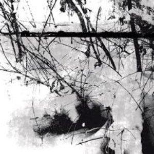 Image pour 'Ein Wanderer'
