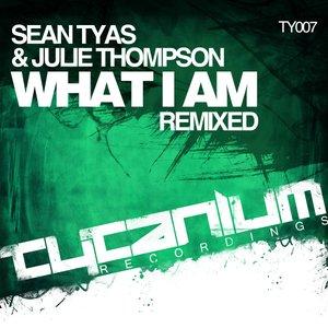Bild für 'What I Am (Remixed)'