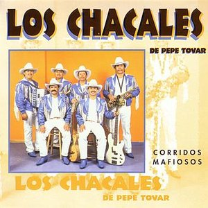 Image for 'Corridos Mafiosos'