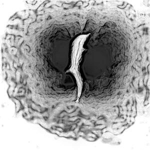 Image for 'Tales of Psychotropicdaelia EP [2006]'